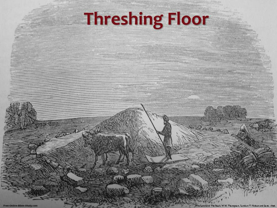 biblical threshing floor images